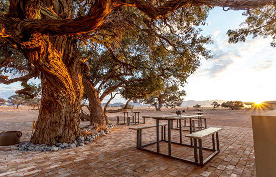 The Acacia Beergarden at Sossusvlei Lodge